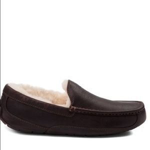 NEW IN BOX Men's UGG Ascot Slippers Brown